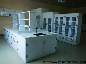 China PP Lab Bench Supplier In Laboratory Equipment and Laboratory Furniture